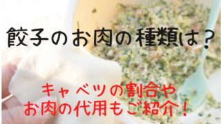 餃子のひき肉の種類は?キャベツとの割合や代用できる物は?